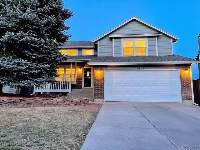 9856 Jellison Street, Westminster, CO 80021 (#9537147) :: Berkshire Hathaway HomeServices Innovative Real Estate