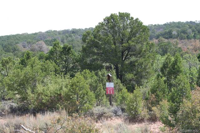 11 Elk Reserve Road, Glade Park, CO 81523 (#9544609) :: iHomes Colorado