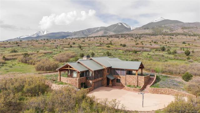 293 Conestoga Lane, Cotopaxi, CO 81223 (MLS #9563765) :: 8z Real Estate