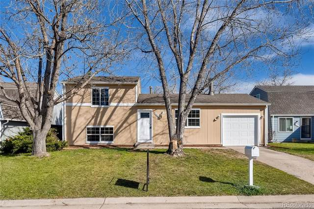 10438 Independence Circle, Westminster, CO 80021 (#9569740) :: Mile High Luxury Real Estate