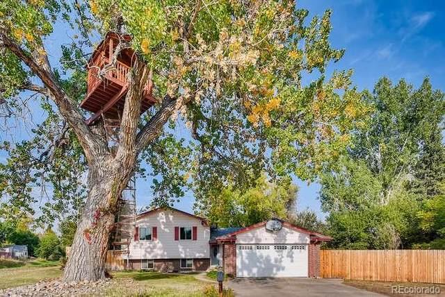 1078 S Johnson Way, Lakewood, CO 80226 (MLS #9574357) :: 8z Real Estate