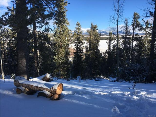 2029 High Creek Road, Fairplay, CO 80440 (MLS #9579406) :: Kittle Real Estate