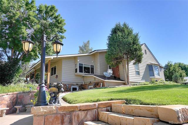789 8th Street, Meeker, CO 81641 (#9580413) :: Portenga Properties