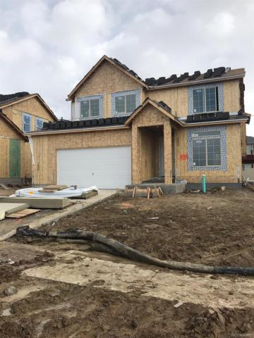 434 Highlands Circle, Erie, CO 80516 (#9581883) :: Bring Home Denver