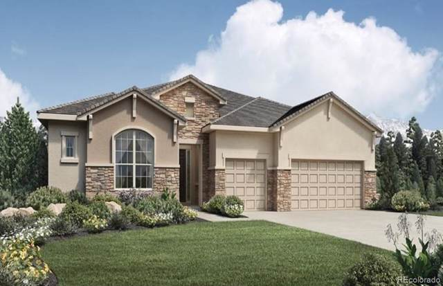 5876 Timber Point Way, Parker, CO 80134 (#9595812) :: Briggs American Properties