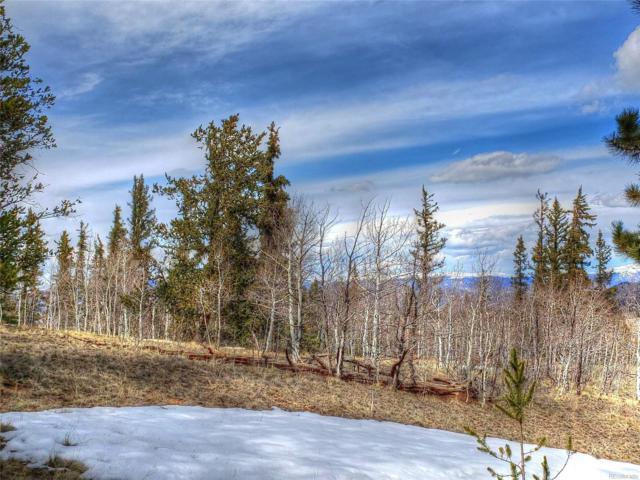 530 Gitche Goone Lane, Como, CO 80432 (#9600090) :: Compass Colorado Realty