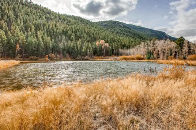 4 Silver Lakes Drive, Dumont, CO 80436 (#9602120) :: Bring Home Denver