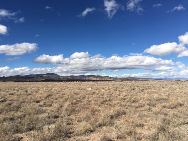 32 La Garita Drive, Del Norte, CO 81132 (#9602667) :: Bring Home Denver