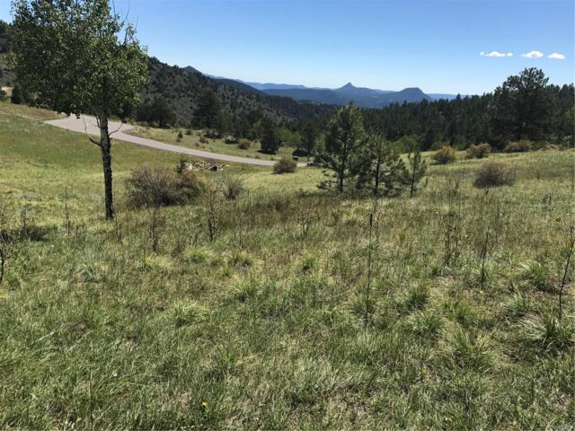 14725 Wetterhorn Peak Trail, Pine, CO 80470 (#9606172) :: The DeGrood Team