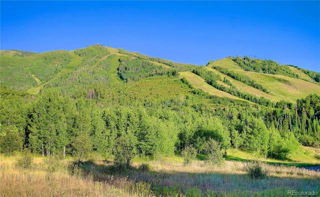 1379 Overlook Drive, Steamboat Springs, CO 80487 (#9608733) :: The DeGrood Team