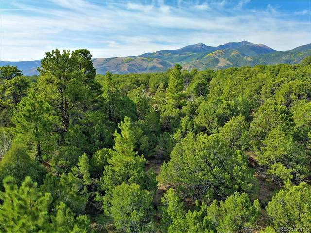 14674 Granite Parkway, Salida, CO 81201 (#9611373) :: Kimberly Austin Properties