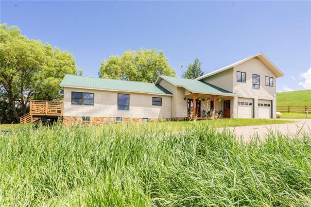 30200 State Highway 131, Steamboat Springs, CO 80487 (#9619794) :: The Heyl Group at Keller Williams