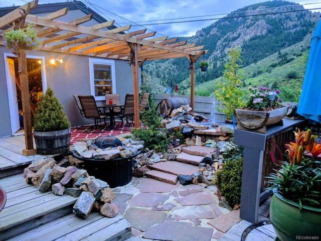 2885 Grapevine Road, Idledale, CO 80453 (#9627207) :: Wisdom Real Estate