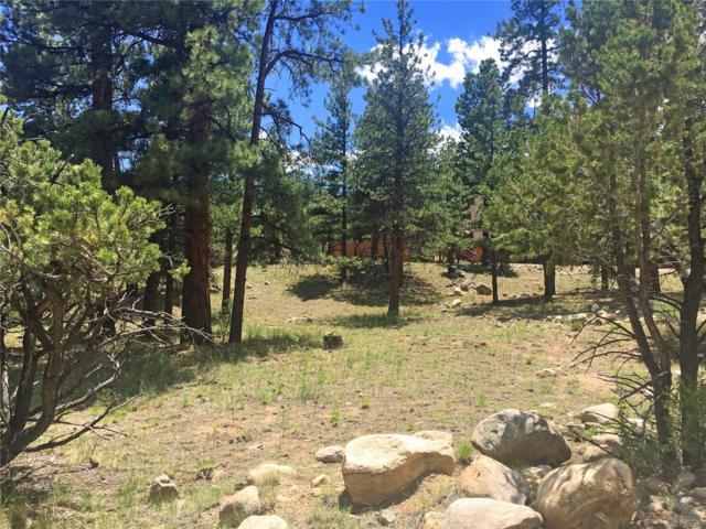 18070 Camino Del Norte, Buena Vista, CO 81211 (#9645454) :: Bring Home Denver