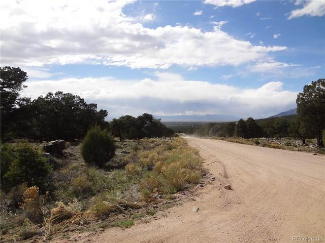 3556 Camino Baca Grande, Crestone, CO 81131 (#9665461) :: James Crocker Team