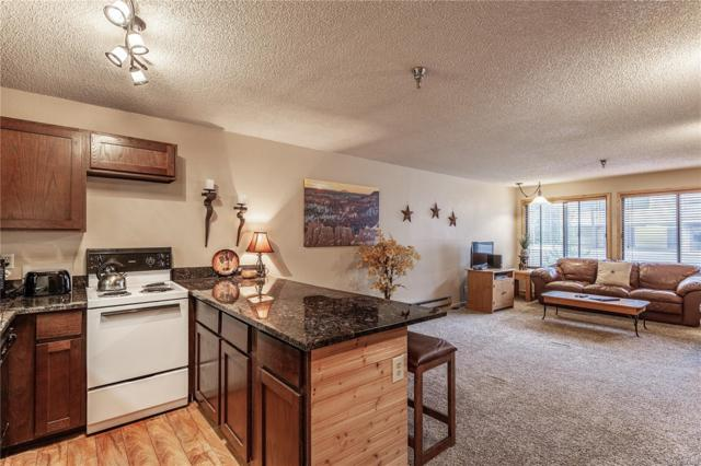 79114 Us Hwy 40 E-211, Winter Park, CO 80482 (#9684077) :: The Griffith Home Team