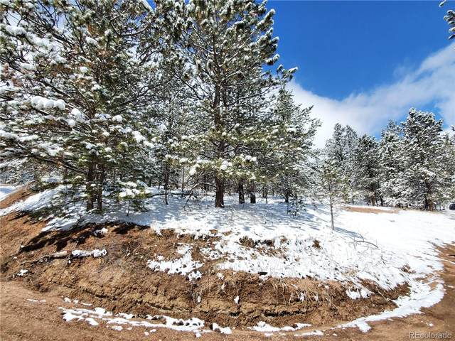 147 W Arrowhead Road, Florissant, CO 80816 (#9691669) :: The Gilbert Group