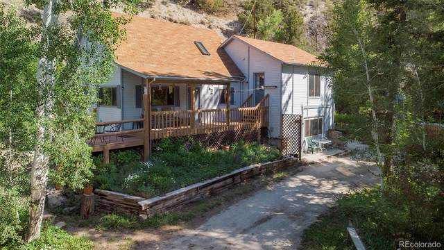 18855 County Road 306, Buena Vista, CO 81211 (#9699124) :: My Home Team