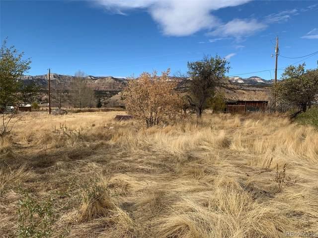 0000 Highway 330, Collbran, CO 81624 (#9741294) :: Briggs American Properties