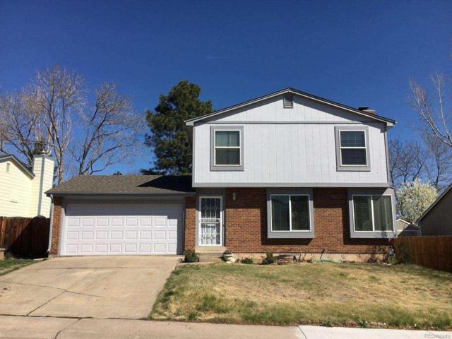 10905 W Alamo Place, Littleton, CO 80127 (#9750220) :: Wisdom Real Estate