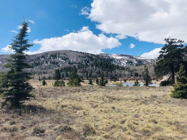 22900 State Highway 17, Antonito, CO 81120 (#9755708) :: Bring Home Denver with Keller Williams Downtown Realty LLC