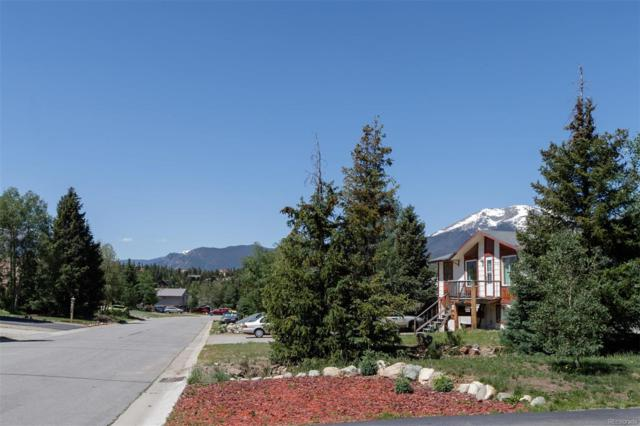 151 Alpine Road, Dillon, CO 80435 (#9783331) :: HomeSmart Realty Group
