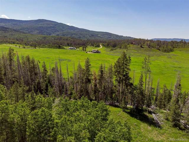 000 Hoch-Eye Way, Oak Creek, CO 80467 (#9805762) :: Wisdom Real Estate