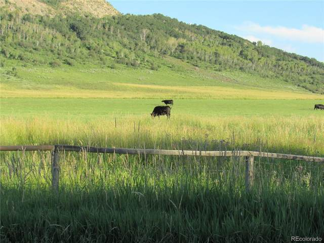 0000 Cr 20 Road, Steamboat Springs, CO 80487 (#9820632) :: Mile High Luxury Real Estate