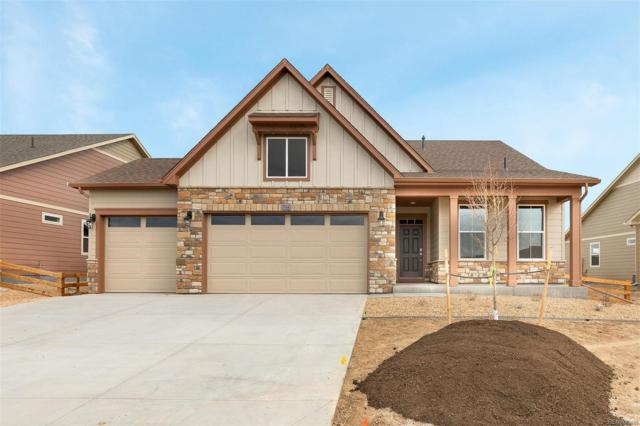 15573 Syracuse Way, Thornton, CO 80602 (MLS #9830697) :: 8z Real Estate