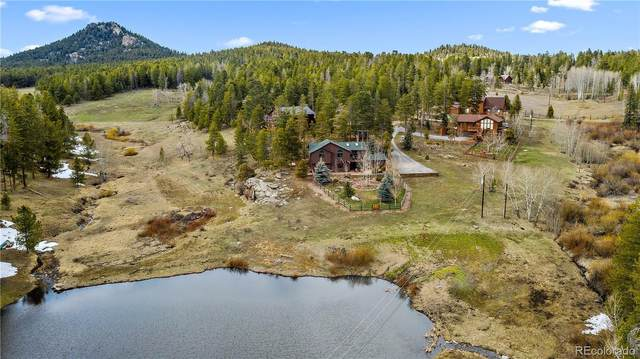 10787 Snowy Trail, Conifer, CO 80433 (#9831029) :: The DeGrood Team