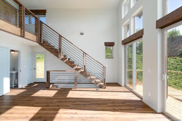 26820 Neptune Place, Clark, CO 80428 (MLS #9842433) :: 8z Real Estate