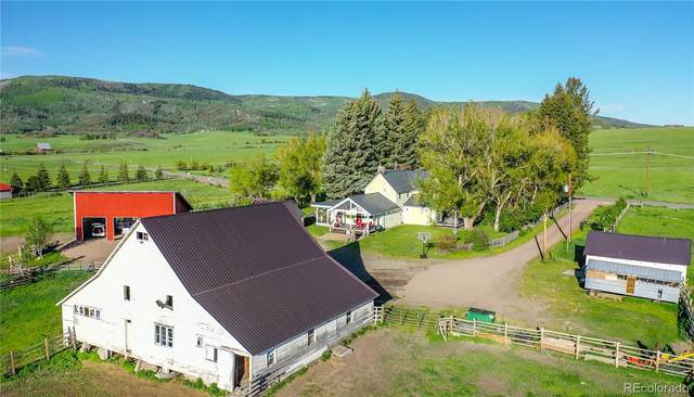 29400 County Road 14, Steamboat Springs, CO 80487 (#9847965) :: Wisdom Real Estate