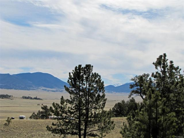 222 Huerfano Drive, Hartsel, CO 80449 (#9856338) :: Bring Home Denver with Keller Williams Downtown Realty LLC