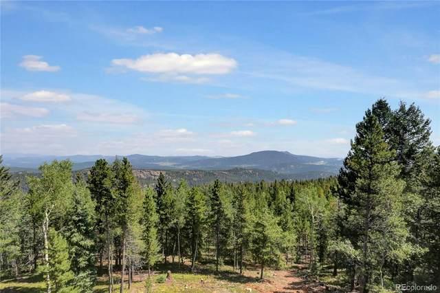31217 Conifer Mountain Drive, Conifer, CO 80433 (#9864779) :: Symbio Denver