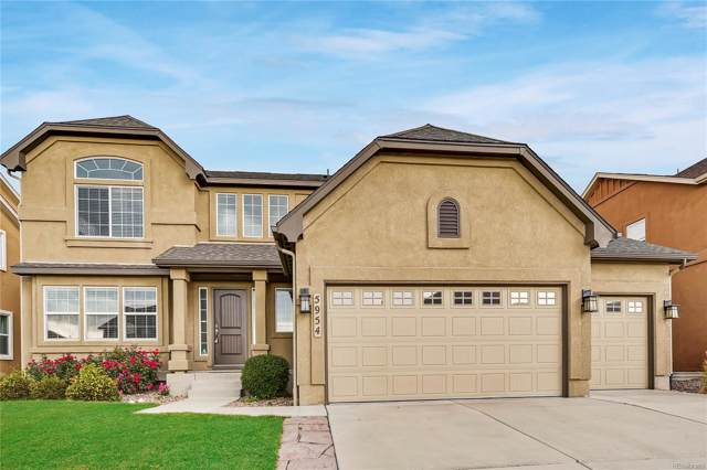 5954 Brave Eagle Drive, Colorado Springs, CO 80924 (MLS #9874553) :: 8z Real Estate