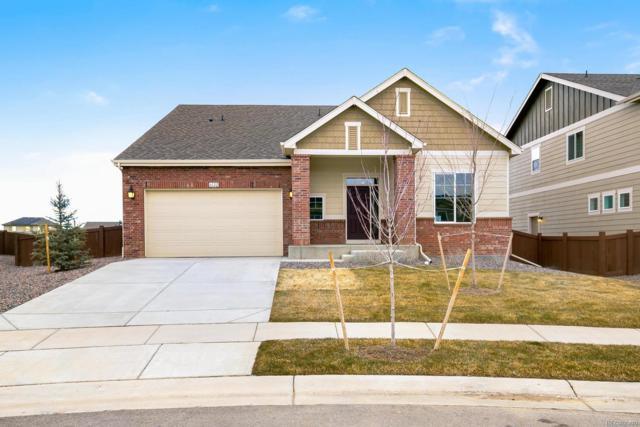 6122 Washakie Court, Timnath, CO 80547 (MLS #9885343) :: 8z Real Estate