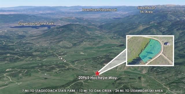 20965 Hoch-Eye Way, Oak Creek, CO 80467 (MLS #9890416) :: Bliss Realty Group