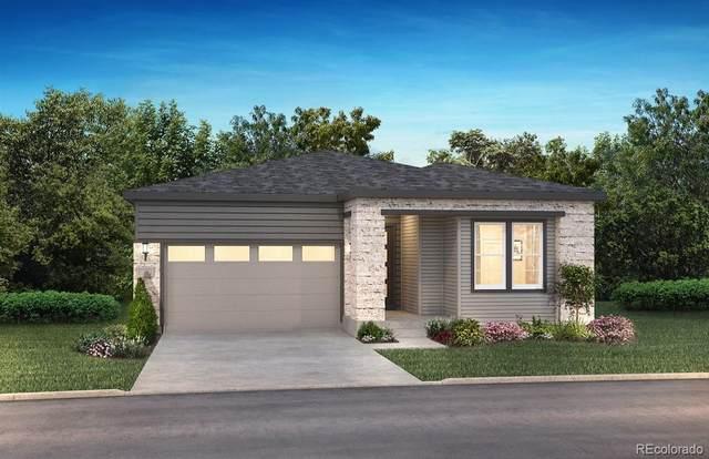 2115 Rim Ridge Drive, Castle Pines, CO 80108 (#9894314) :: Mile High Luxury Real Estate