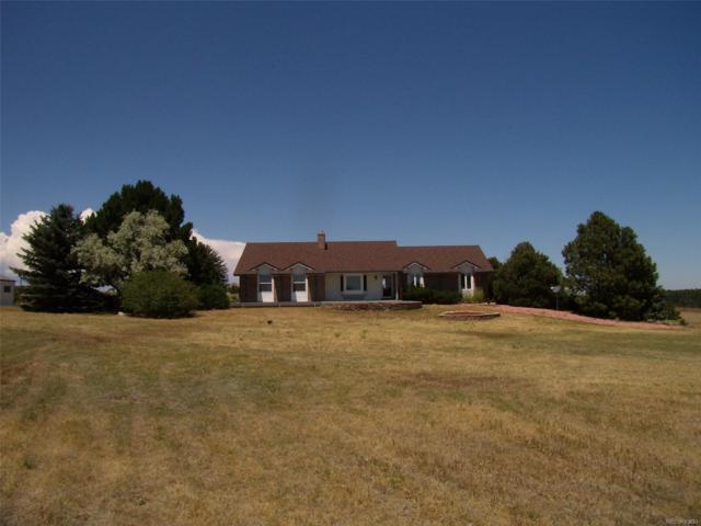 2195 S Tarryall Way, Franktown, CO 80116 (MLS #9910686) :: 8z Real Estate