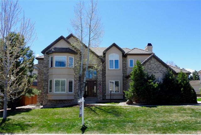 9404 S Shadow Hill Circle, Lone Tree, CO 80124 (#9937688) :: The DeGrood Team