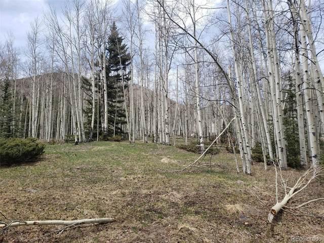 Vacant Land, Jasper, CO 81132 (#9947864) :: The DeGrood Team