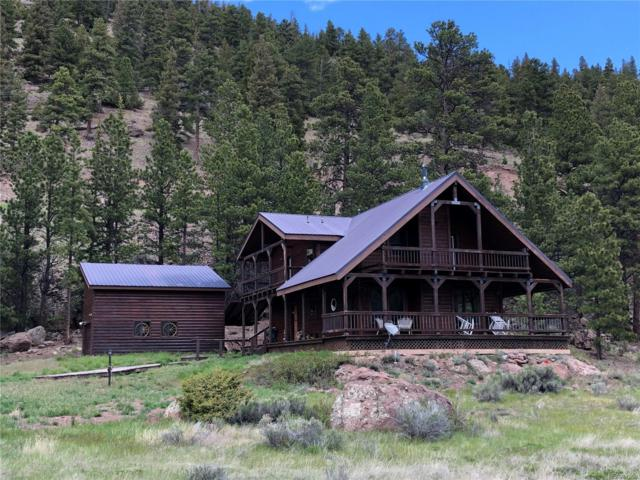 67 Lonesome Pine Drive, Antonito, CO 81120 (#9969116) :: The DeGrood Team