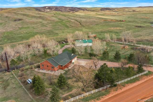 6984 Roxborough Park Road, Littleton, CO 80125 (#9972486) :: The Colorado Foothills Team | Berkshire Hathaway Elevated Living Real Estate