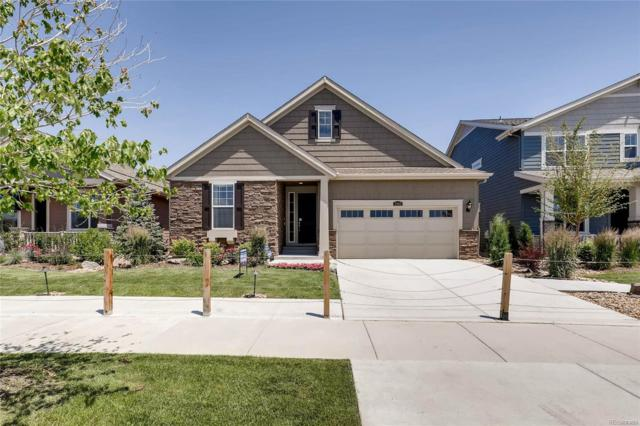 2352 Provenance Street, Longmont, CO 80504 (#9980547) :: The DeGrood Team