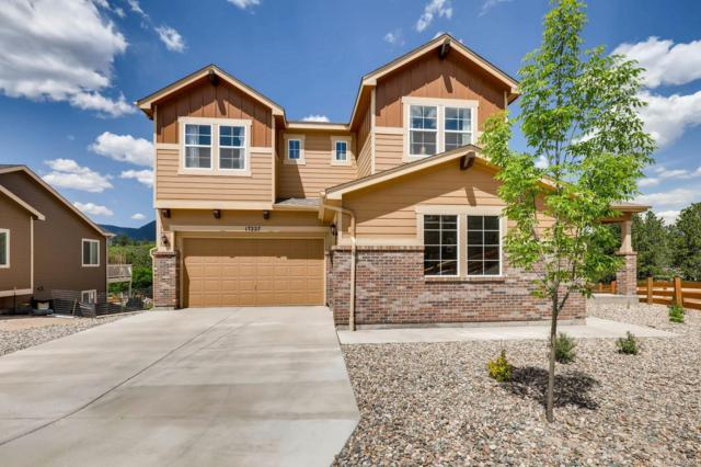 17227 Leisure Lake Drive, Monument, CO 80132 (#9995747) :: Structure CO Group