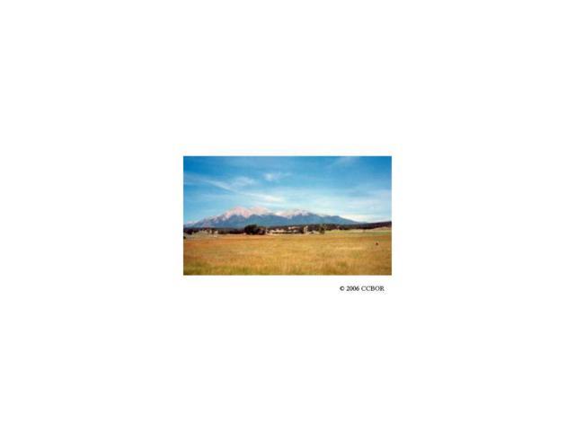 12994 Paradise Way, Salida, CO 81201 (MLS #C205226) :: 8z Real Estate