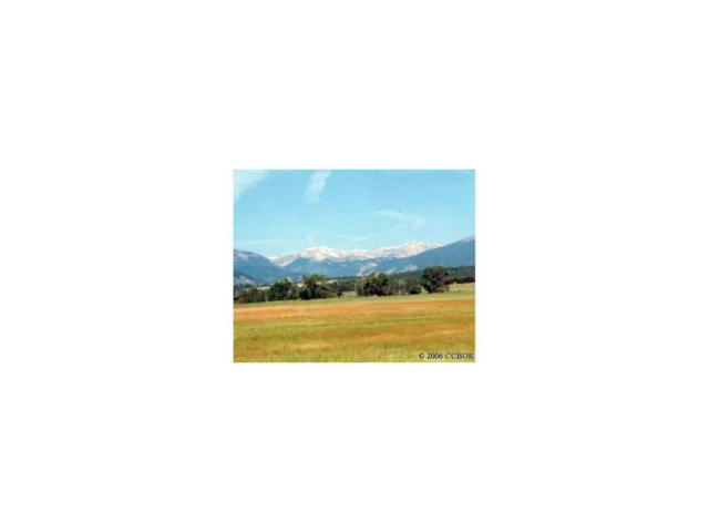 12992 Paradise Way, Salida, CO 81201 (MLS #C205228) :: 8z Real Estate