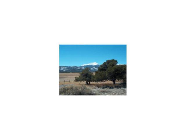 8100 Windmill Lane, Salida, CO 81201 (MLS #C209873) :: 8z Real Estate