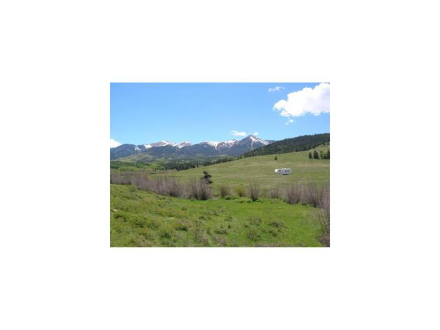 96 Ute Valley Road, Westcliffe, CO 81252 (MLS #C227079) :: 8z Real Estate