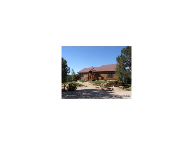 9383 Cody Park Road, Cotopaxi, CO 81252 (MLS #C230167) :: 8z Real Estate